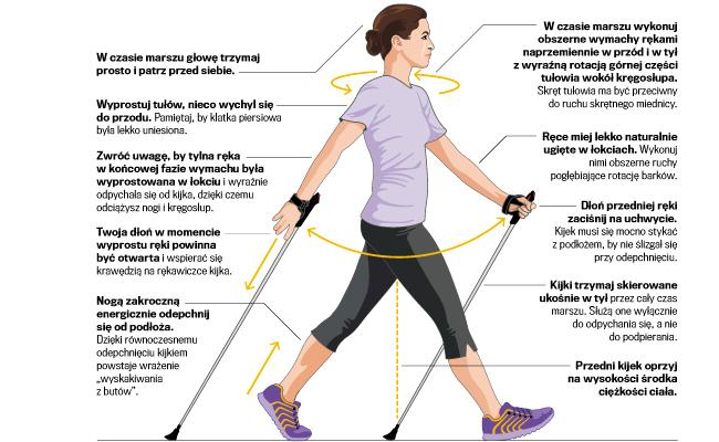 Nordic walking - jak na skrzydłach - Wiele wiosen